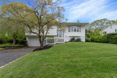 Smithtown Single Family Home For Sale: 48 Parnell Dr