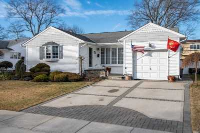 Seaford Single Family Home For Sale: 3845 Mill Rd