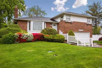 Plainview Single Family Home For Sale: 45 Maplewood Dr