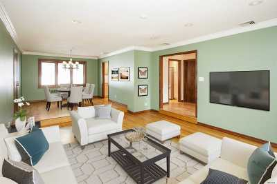 East Meadow Single Family Home For Sale: 699 Eisenhower Pl
