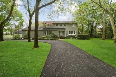 Woodbury Single Family Home For Sale: 216 Plainview Rd