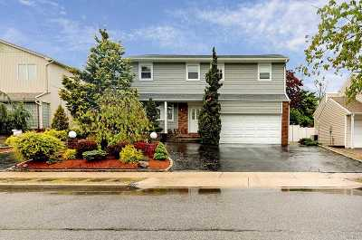 Bellmore Single Family Home For Sale: 3172 Lee Pl