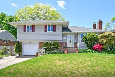 Plainview Single Family Home For Sale: 233 Floral Ave