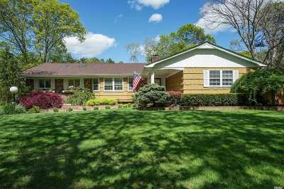 Dix Hills Single Family Home For Sale: 275 Marlin St