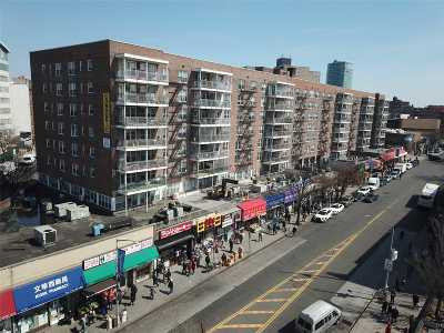 Flushing Condo/Townhouse For Sale: 41-25 Kissena Blvd #6JJ