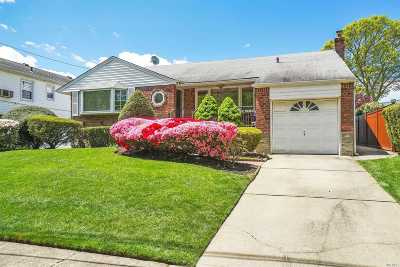 Seaford Single Family Home For Sale: 1734 Park Dr