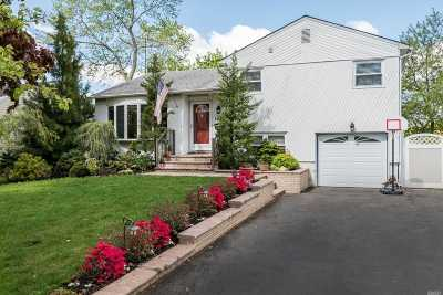Seaford Single Family Home For Sale: 1052 Gold St