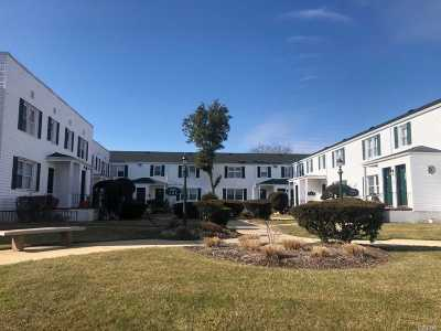 Freeport Co-op For Sale: 494 S Ocean Ave #2H