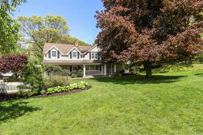 Woodbury Single Family Home For Sale: 9 Juneau Blvd