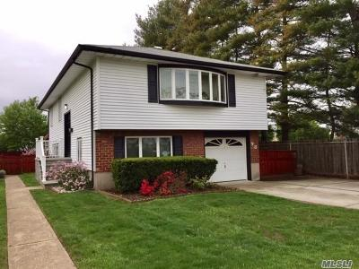 Hicksville Single Family Home For Sale: 98 Bethpage Rd