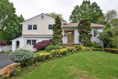 Plainview Single Family Home For Sale: 7 Frederick Dr