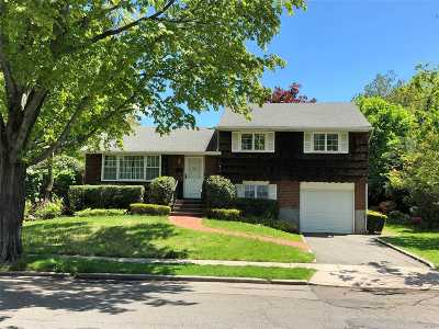 Syosset Single Family Home For Sale: 6 Richard Ln