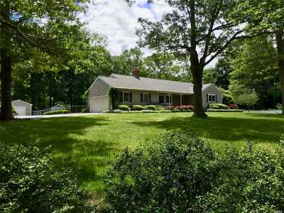 Greenlawn Single Family Home For Sale: 124 Clay Pitts Rd