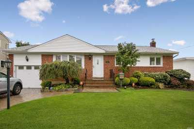 Massapequa Park Single Family Home For Sale: 334 Balchen St