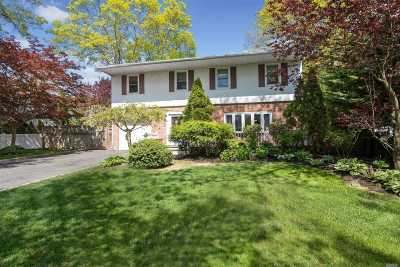 Smithtown Single Family Home For Sale: 23 Villa Ln
