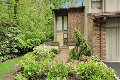 Jericho Condo/Townhouse For Sale: 269 Vista Dr
