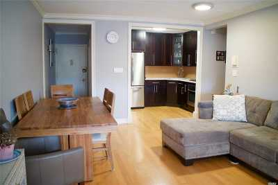 Middle Village Condo/Townhouse For Sale: 66-59 71st St #3A