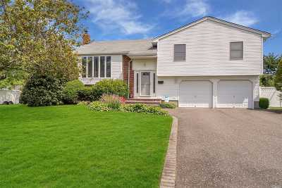 Commack Single Family Home For Sale: 1 Splitrail Pl