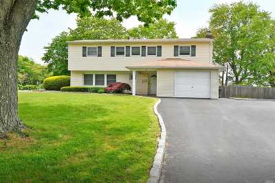 Commack Single Family Home For Sale: 1 Blue Spruce Ln