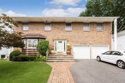 Nassau County Single Family Home For Sale: 16 Longview Ave