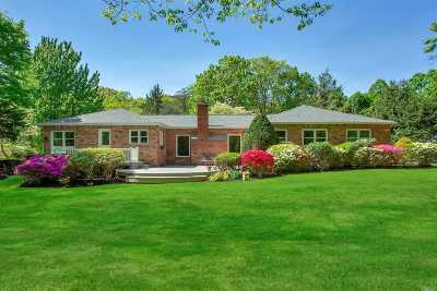 Dix Hills Single Family Home For Sale: 8 Grey Birch Ct