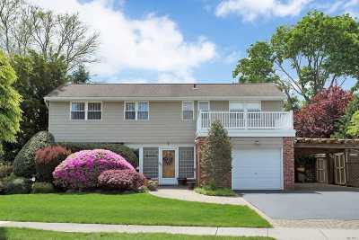 Plainview Single Family Home For Sale: 1 Argyle Rd
