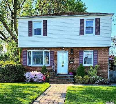Mineola Single Family Home For Sale: 444 Wilson Blvd