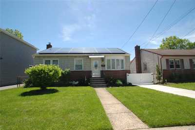 New Hyde Park Single Family Home For Sale: 54 2nd St
