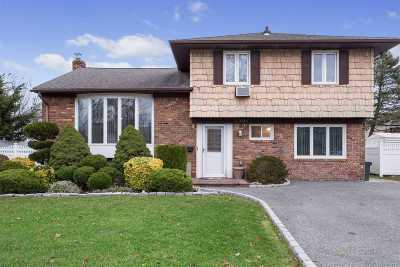 Wantagh Single Family Home For Sale: 1391 Holiday Park Dr
