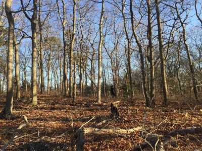 Hampton Bays Residential Lots & Land For Sale: 4 Ardmore Ct
