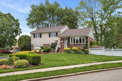 Plainview Single Family Home For Sale: 160 Floral Ave