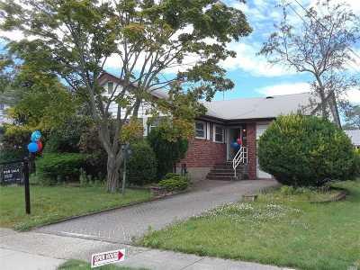 Baldwin Single Family Home For Sale: 971 Jackson St