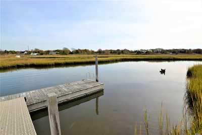 Westhampton Single Family Home For Sale: 32 Tanners Neck Ln