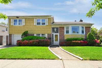 Douglaston Single Family Home For Sale: 53-16 Douglaston Pky