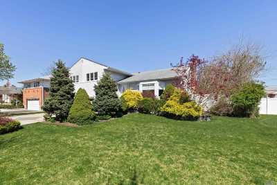 Nassau County Single Family Home For Sale: 7 Chapin Rd