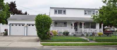 Nassau County Single Family Home For Sale: 6 Jerome Ave