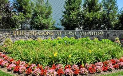 East Meadow Condo/Townhouse For Sale: 245 Spring Dr #245
