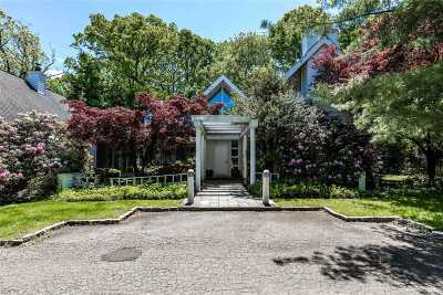 Old Westbury Single Family Home For Sale: 132 Old Westbury Rd