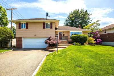 Syosset Single Family Home For Sale: 3 Beth Pl