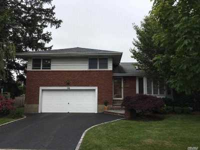 Hicksville Single Family Home For Sale: 32 Balsam Dr