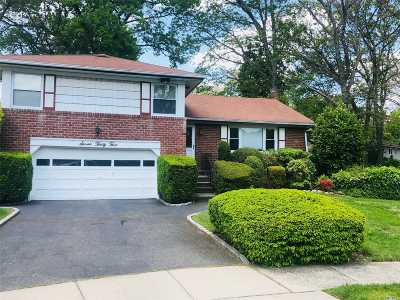 East Meadow Single Family Home For Sale: 735 Leslie Ln