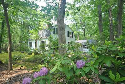 Setauket Single Family Home For Sale: 19 West Meadow Rd