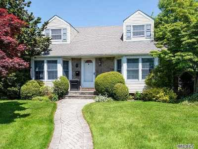 Carle Place, Westbury Single Family Home For Sale: 1 Southview Ct