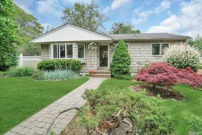 Ronkonkoma Single Family Home For Sale: 27 Terrace Dr