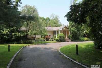 Great Neck Single Family Home For Sale: 196 Kings Point Rd