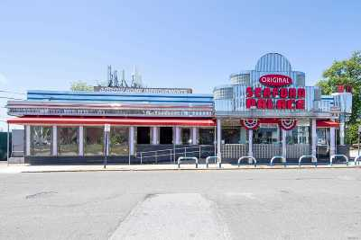 Seaford Commercial For Sale: 3864 Merrick Rd