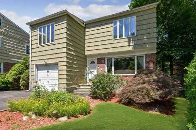 Great Neck Single Family Home For Sale: 35 Valley View Rd