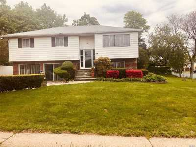 Bethpage Single Family Home For Sale: 1 Central Blvd
