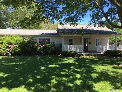 Bayport Single Family Home For Sale: 507 Gillette Ave