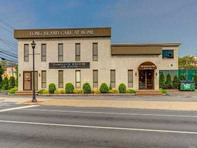 Nassau County Commercial For Sale: 15 Newbridge Rd